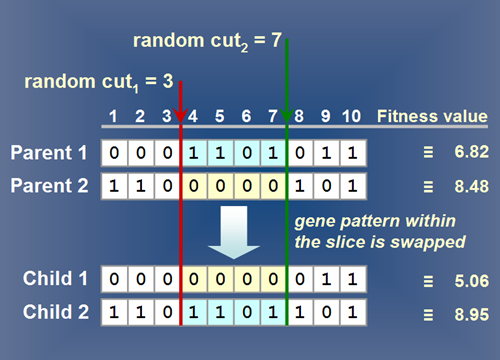 Image of: Fig 3. A typical simple crossover method